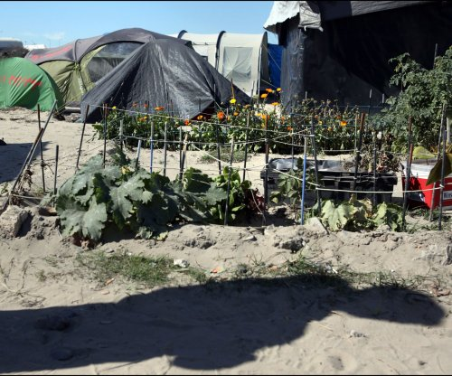 Workers begin disassembly of 'Jungle' refugee camp in France