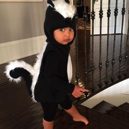 Kim Kardashian and Kanye West's North goes as skunk for Halloween