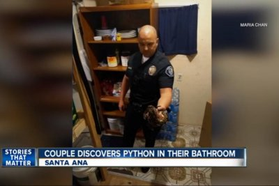 California couple find python in their bathroom