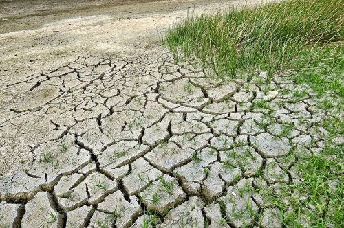 Drylands to become more abundant, less productive due to climate change