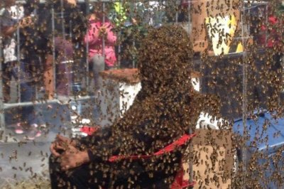 Canadian man wears beard of bees for world-record 61 minutes