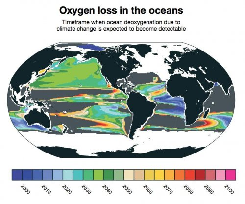 Study: Oxygen drain will be apparent in oceans by 2030s