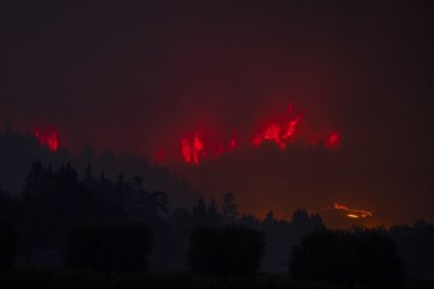 Fourth person dies in California's Zogg Fire