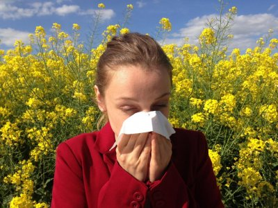 Asthma, hay fever, eczema linked to higher psychiatric disorders risk in study