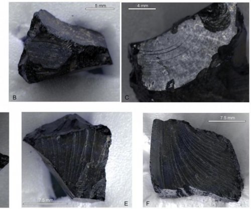 Middle Eastern bitumen found in 7th century British ship burial