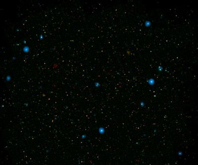 Astronomers survey chorus of black holes belting out X-rays