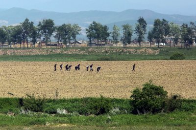 Hot, dry spell in North Korea could hurt crops, state media says