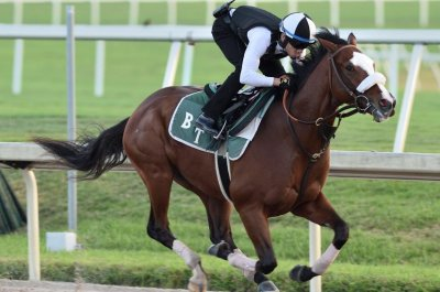 Kentucky Derby preps in Florida, Japan highlight weekend horse racing