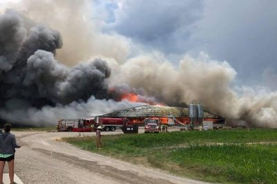 5,000 pigs burned alive in Ohio barn fire