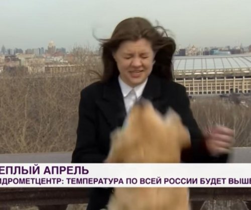 Dog steals Russian TV reporter's microphone during live broadcast