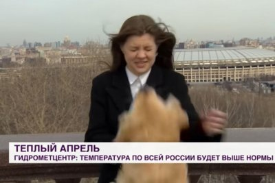 Watch:-Dog-steals-Russian-TV-reporter's-microphone-during-live-broadcast