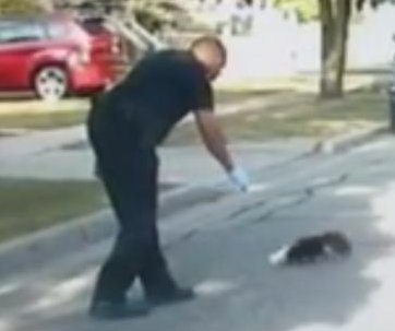 Michigan police officer saves skunk from yogurt cup