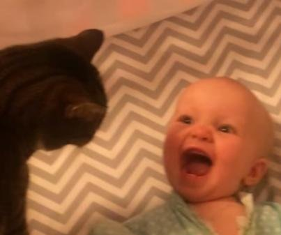 Adorable baby 'can't control her limbs' around the family cat