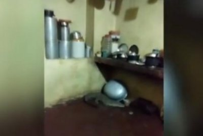 Resident finds crocodile lurking on floor of kitchen