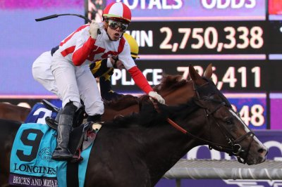 Bricks and Mortar named U.S. Horse of the Year