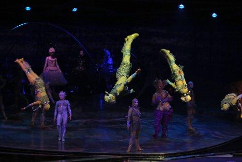 Aerialist Yann Arnaud dies after Cirque du Soleil fall