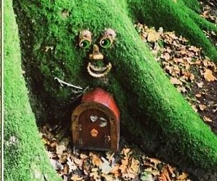 'Fairy control' to get rid of 'garish' fairy doors in British woods