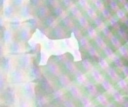 X-ray image purports to show Monopoly dog swallowed by real dog