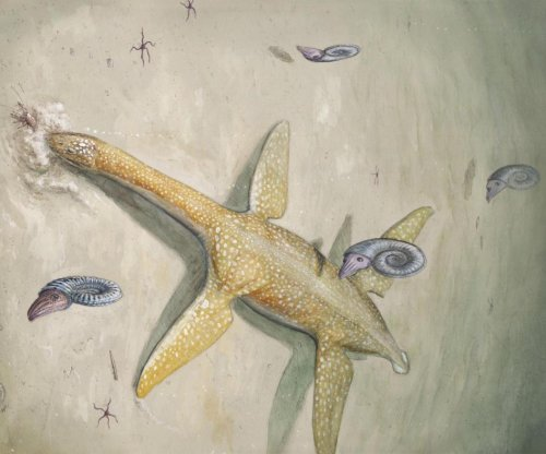 New giant marine reptile species from the Early Jurassic found
