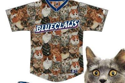 Minor league baseball team to wear cat-themed uniforms in celebration of 'Caturday'