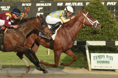 UPI Horse Racing Weekend Preview: Ohio Derby highlights American action