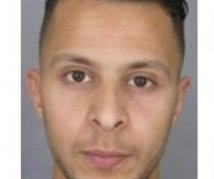 Lawyer says Paris attack suspect has 'intelligence of empty ashtray'