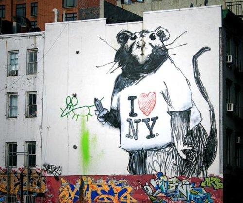 Unlocking the secret lives of urban rats