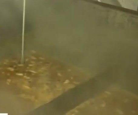 Louisiana chef breaks Guinness record with 6,800-pound gumbo