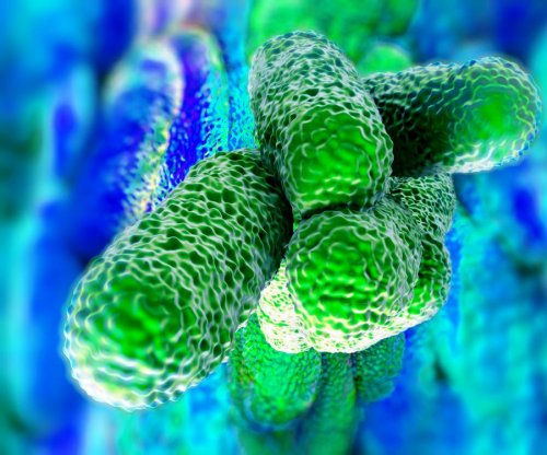 Legionnaires' disease outbreak in New York City sickens 29, kills 2