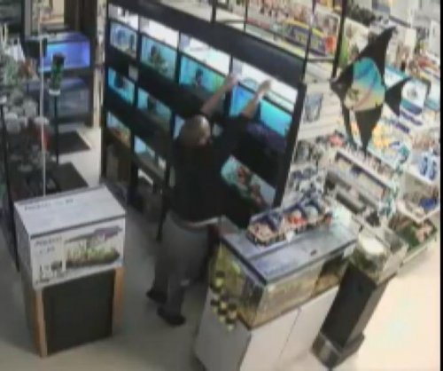 Security cameras catch thief shoving live fish down his pants