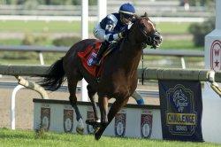 UPI Horse Racing Roundup: Winx wins again in Australia