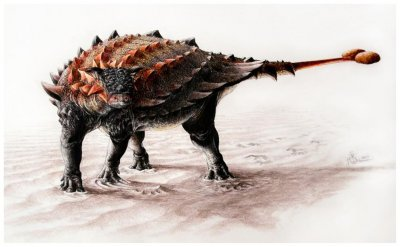 New armored dinosaur species unearthed in New Mexico