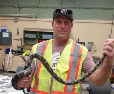 Snake freed after week stuck in Canada drain