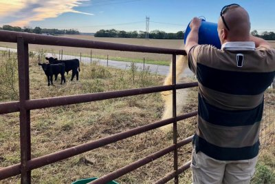 USDA reopens Farm Service Agency amid shutdown