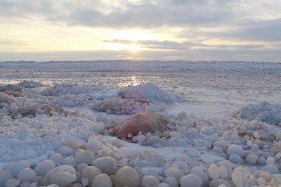 'Gazillions' of natural ice balls cover Lake Michigan beach