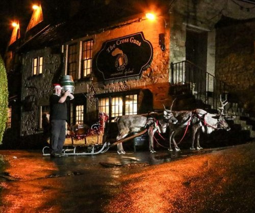 Reindeer deliver beer to UK pubs