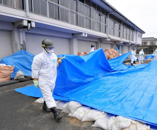 More nuclear power needed by 2030, Japan says