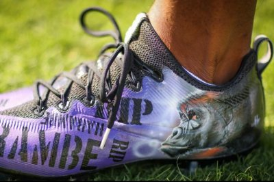Jerick McKinnon honors gorilla Harambe before game