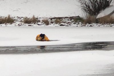 Firefighters rescue deer that fell through thin ice