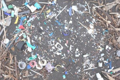 Increasing levels of plastic pollution making way to South Atlantic Islands