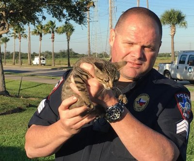 Texas police use Whataburger to rescue kitten from drain
