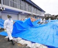 South Korea may participate in Fukushima wastewater probe