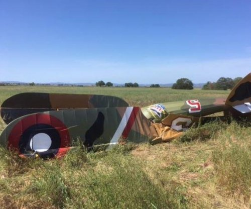 Pilot dies in crash of World War I replica biplane