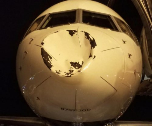 Dented plane carrying Oklahoma City Thunder likely struck bird
