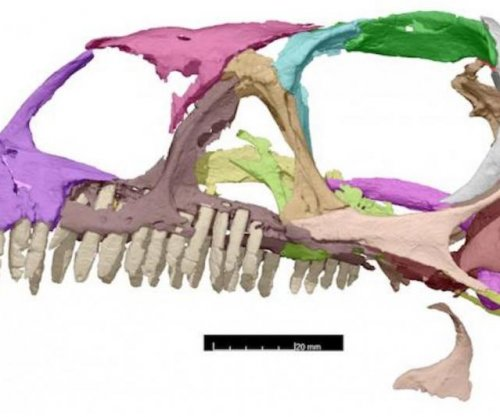 Scientists publish 3D-printing plans for 200-million-year-old dinosaur skull