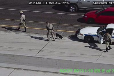 Troopers rescue loose dog on Phoenix freeway