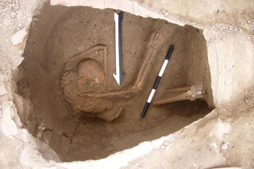 Ancient DNA to help solve mysteries of the Canaanites