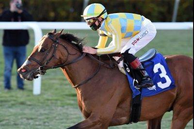 Ride a Comet earns Pegasus bid in weekend racing