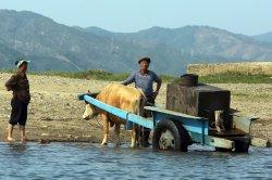 North Korea short 860,000 tons of food this year, U.N. agency says