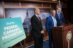 Federal marijuana legalization could tax drug back to the street, experts say